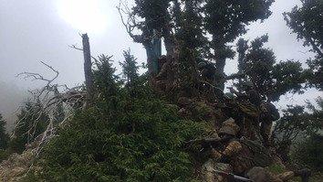 راجگال وادی خالی کرا لینے سے دہشت گردوں کا افغان سرحد کا راستہ ختم ہو گیا