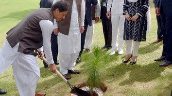 'Plant for Pakistan' sets sights on planting 10 billion trees in 5 years