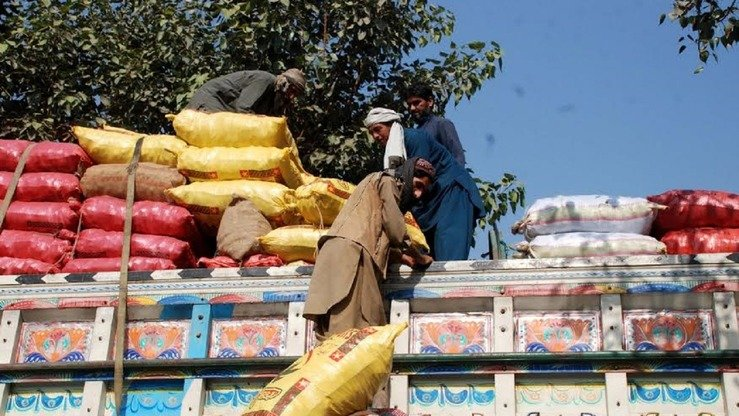 Workers load sacks of grain onto a truck in Peshawar for delivery to a local market in November. [Muhammad Shakil]