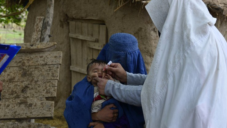 A female vaccinator administers polio drops to a child in FATA during an immunisation campaign in 2017. Improved security and strenuous efforts by health workers have kept the tribal belt polio free for the past year. [Courtesy of FATA Emergency Operation Centre (EOC)]