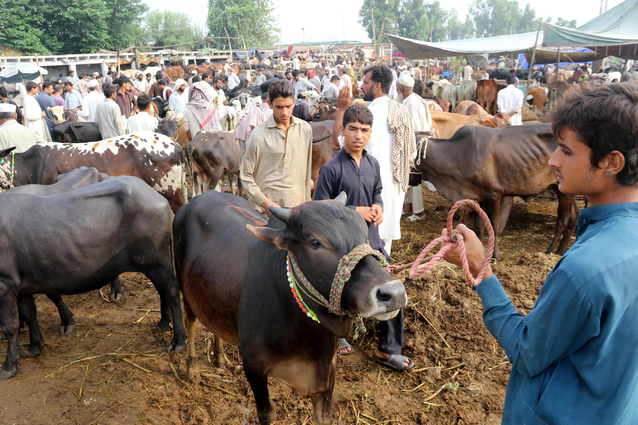 عید سے قبل پاکستان بھر میں سیکیورٹی اقدامات میں اضافہ