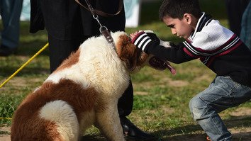 "A Pakistani boy pats his dog at a ""Dog and Pet Gala"" in Islamabad April 5, 2015. The show was organised by Pet Lovers Club Pakistan in collaboration with the Anti Narcotics Force (ANF) awareness campaign against drug use. [Farooq Naeem/AFP]"