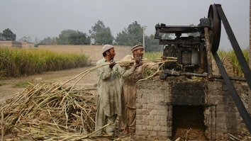 Two farmers in Charsadda District crush sugarcane in January to obtain juice for making gur. [Alamgir Khan]