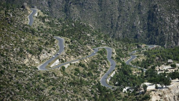 A winding road on a tree plantation in Buner is shown May 18. [Farooq Naeem/AFP]