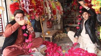 امن کی واپسی کے ساتھ پشاور میں پھولوں کا کاروبار پُر بہار