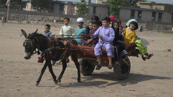 Children ride a donkey cart near Peshawar on June 4. [Shahbaz Butt]