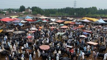 تصاویر میں: عید الاضحیٰ کی تیاری