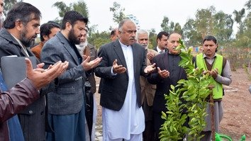 Khyber Pakhtunkhwa plants public orange trees in 'Fruit For All' drive